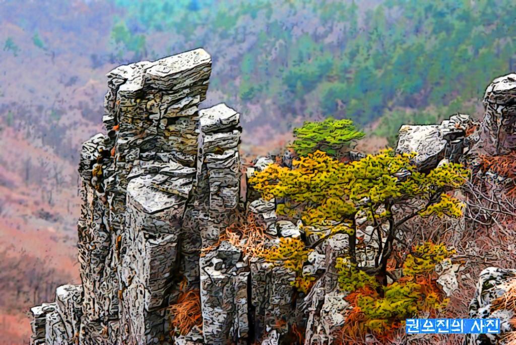 장흥 제암산의 가을풍경